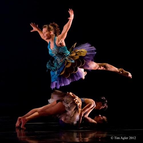 'Give Me Wings', Choreographer: Laura Karlin (in collaboration with the dancers), Invertigo Dance Theatre