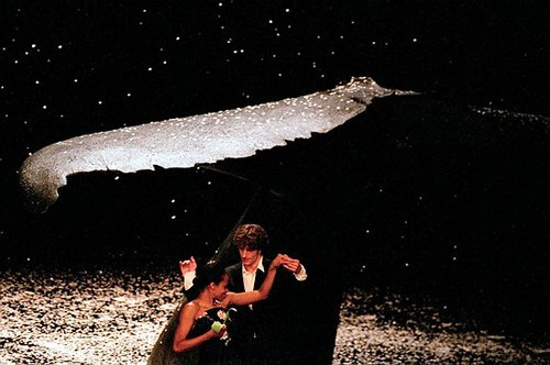 Bausch's TEN CHI ('Heaven and Earth) under a whale bone