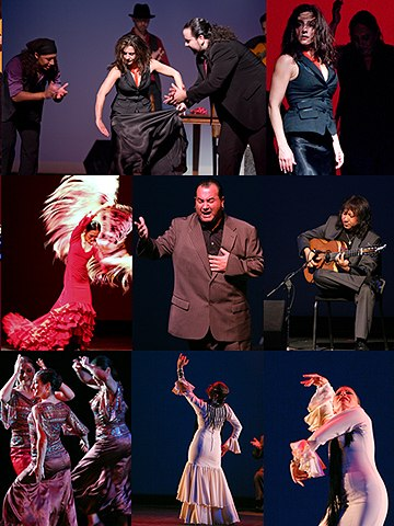 Images from the Los Angeles Flamenco Festival 2010